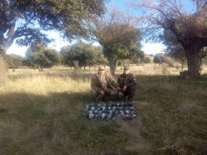 Torcaces y cimbeles | La caza de la paloma torcaz con cimbel